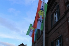 ZFV_Rathaussturm_0014
